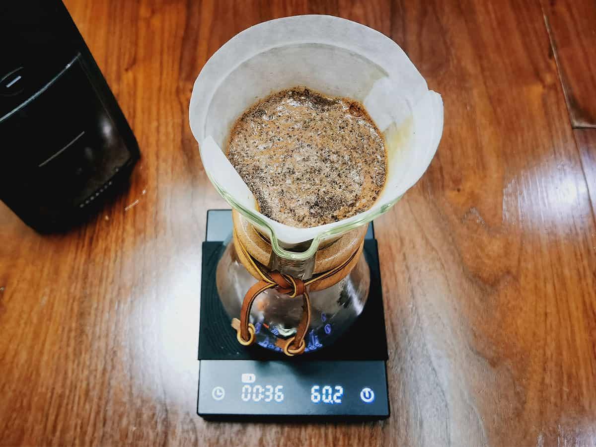 bloom-coffee