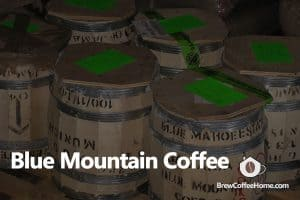 Jamaican-blue-mountain-coffee-featured-image