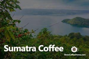 sumatra-coffee-featured-image
