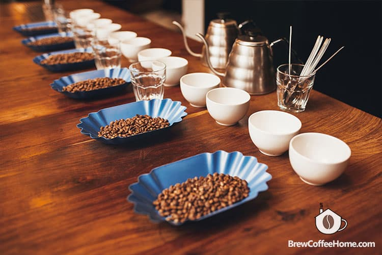 coffee-grading