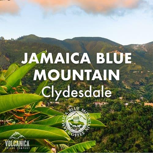 jbmclydesdaleicon-Volcanica