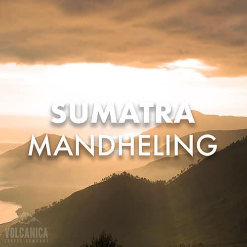 sumatra-mandheling