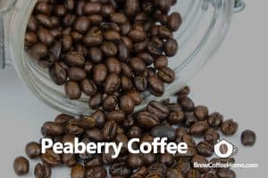 peaberry-coffee-featured-image