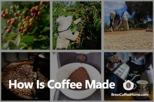 how-is-coffee-made-featured